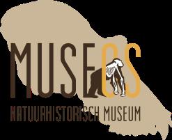 Museos_met_schedel én tekst